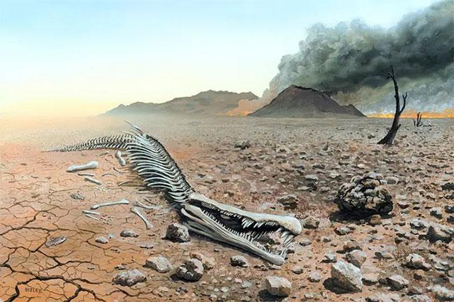 Động lực chính của sự hủy diệt là những thay đổi nhanh chóng trong việc sử dụng đất, biển của con người.