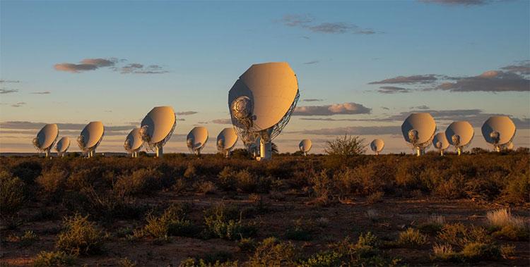 MeerKAT là một giàn 64 đĩa vệ tinh trải đều trên diện tích 8km, được liên kết với nhau.