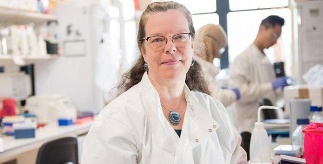 Giáo sư Cordelia De Moor – Người đứng đầu nhóm nghiên cứu.