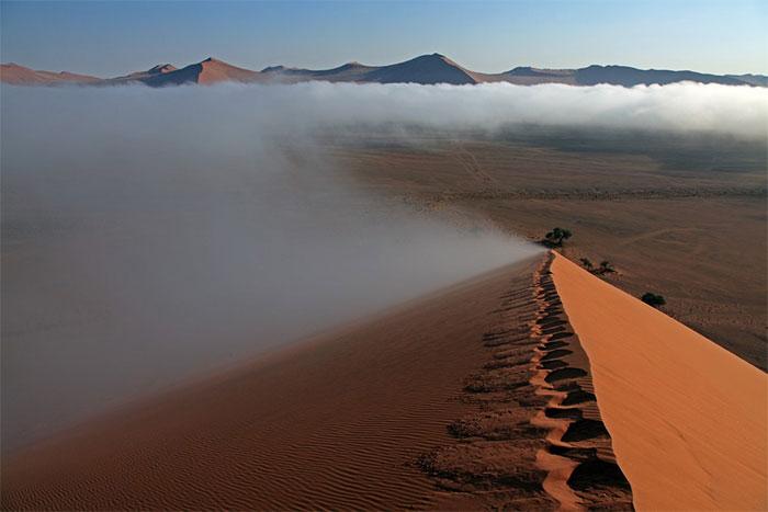 Sương mù thường xuyên xuất hiện ở Namib, mang tới sức sống cho vạn vật.