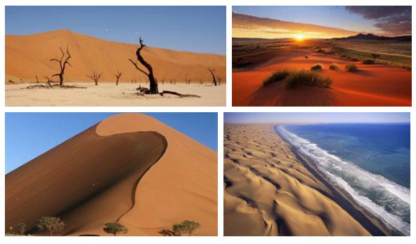 Namib là một sa mạc ven biển thuộc miền Nam của Lục Địa Đen.