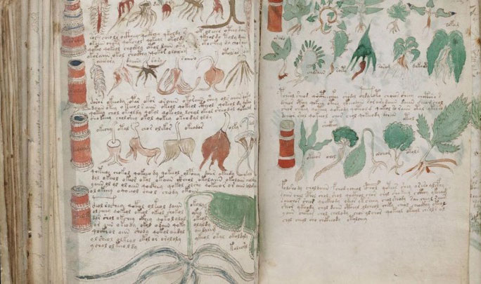 Văn bản bí ẩn Voynich cuối cùng đã có người giải mã thành công.