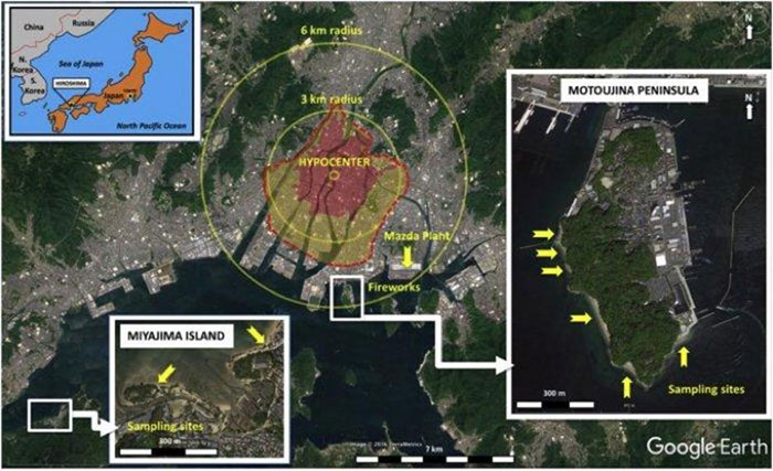 Quả bom nguyên tử Little Boy đã khiến mưa thủy tinh rơi xuống nhiều bãi biển quanh thành phố Hiroshima