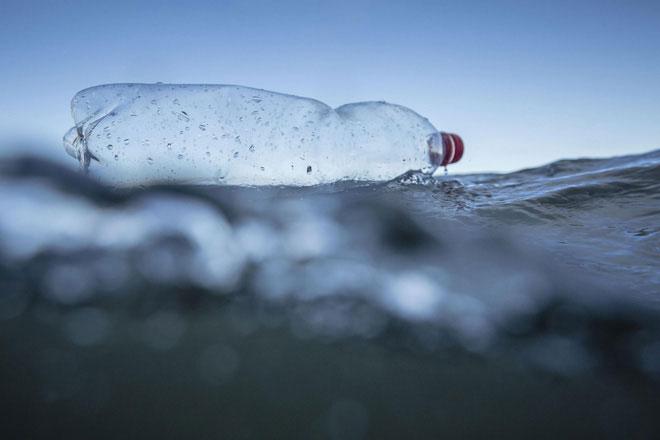 Các loại vi khuẩn đã từng tiếp xúc với nhựa trước đó cũng cho khả năng ăn nhựa tốt hơn.