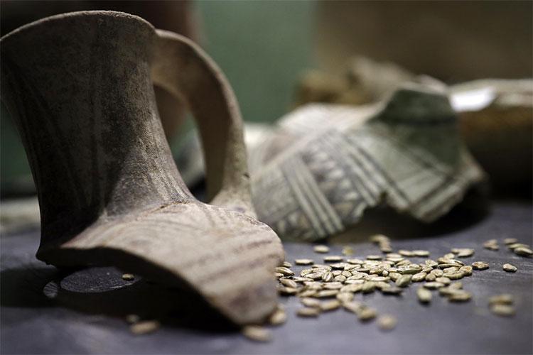 Mảnh vỡ của bình gốm cổ từ thời Pharaoh.