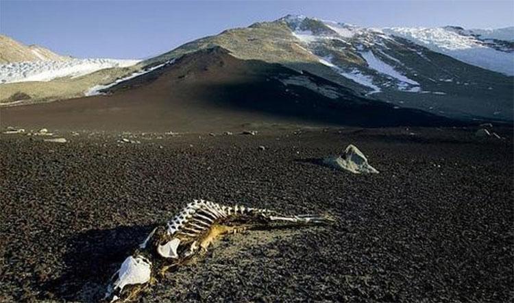 Người hoặc động vật đi vào thung lũng rất dễ bị sét đánh trúng.