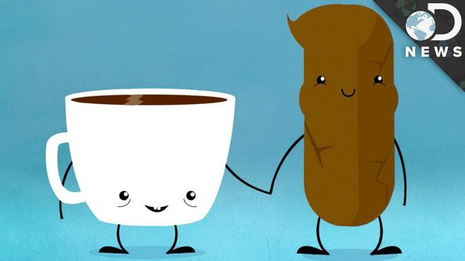 Khoảng 30% những người uống cà phê xong sẽ buồn đi đại tiện.