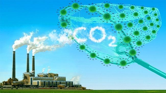 Phương pháp mới thu giữ khí CO2.