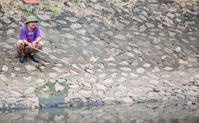 Câu cá ở sông Tô Lịch
