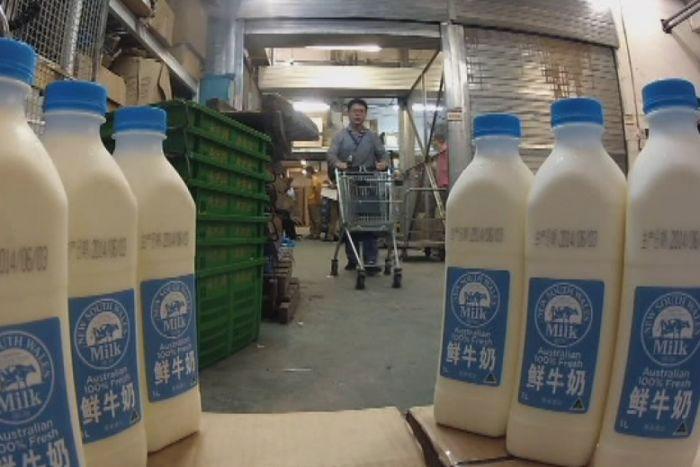 Naturo cho biết sản phẩm sữa tươi của họđã được xuất khẩu sang Trung Quốc.