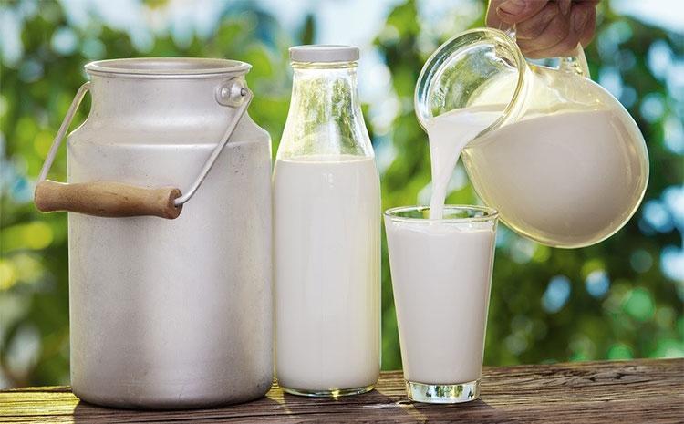 Thông thường sữa tươi kéo dài không quá ba tuần trong tủ lạnh.