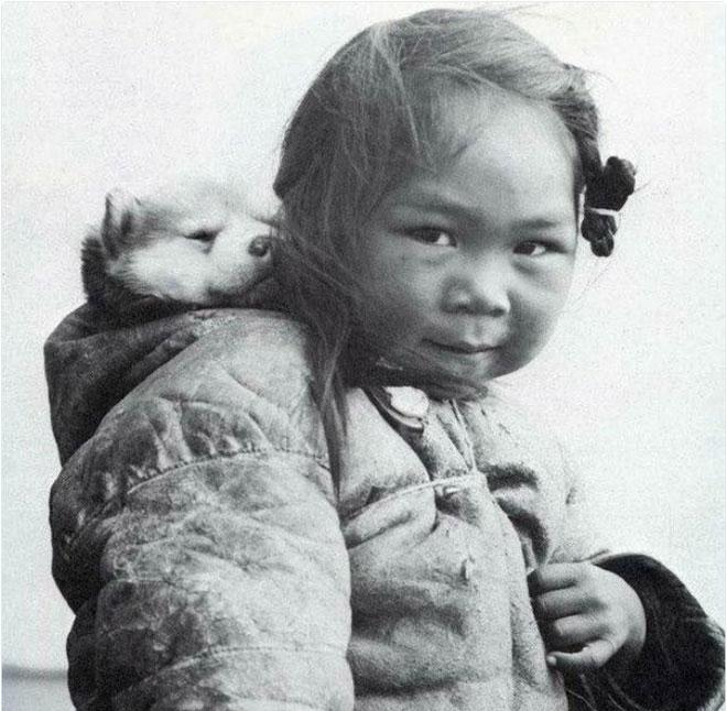 Cô bé người Eskimo bên người bạn trung thành của mình - một chú chó husky.