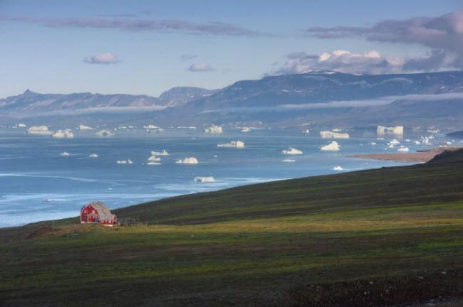Cảnh tượng được nhìn thấy nhiều nhất ở Greenland là băng trôi