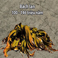 Những sinh vật sống lâu đời nhất còn tồn tại trên Trái đất