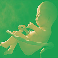 2 em bé chỉnh sửa gene tại Trung Quốc đang có nguy cơ chết sớm