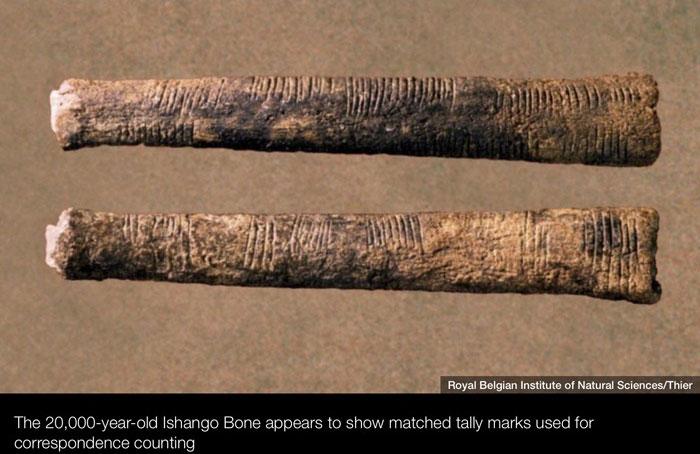 Một mảnh xương có niên đại 20.000 năm