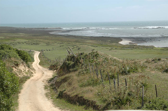 Cả hòn đảo có độc một con đường.