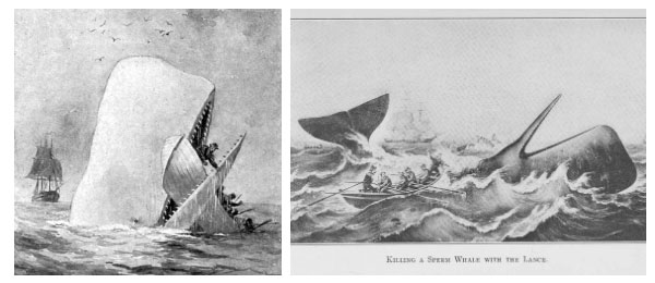 Mocha biến thành điểm dừng chân của các tàu săn cá.