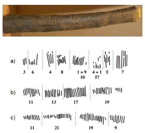 Một mảnh xương có niên đại 20.000 năm khắc các số một của người cổ.