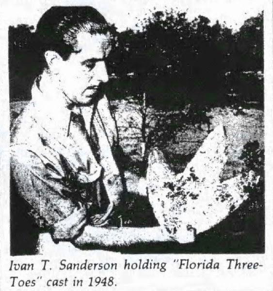 Ivan Sanderson cầm mẫu chân chim được đúc ra từ vết chân trên mặt đất.
