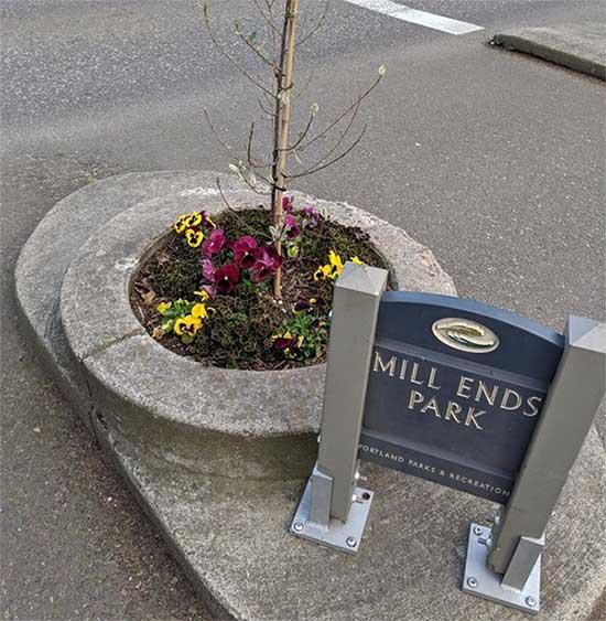 Công viên nhỏ nhất thế giới nằm ở Portland, bang Oregon, Mỹ.