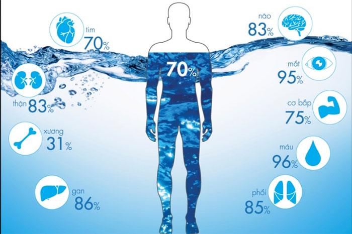 Nước sinh học bao gồm 70 nguyên tố hóa học.