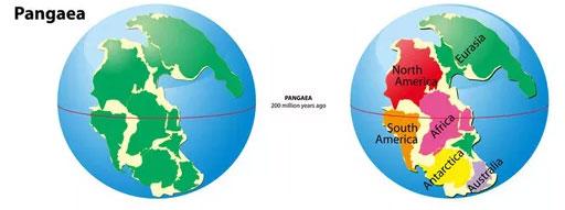 Siêu lục địa Pangaea trước khi bị xé thành 6 châu