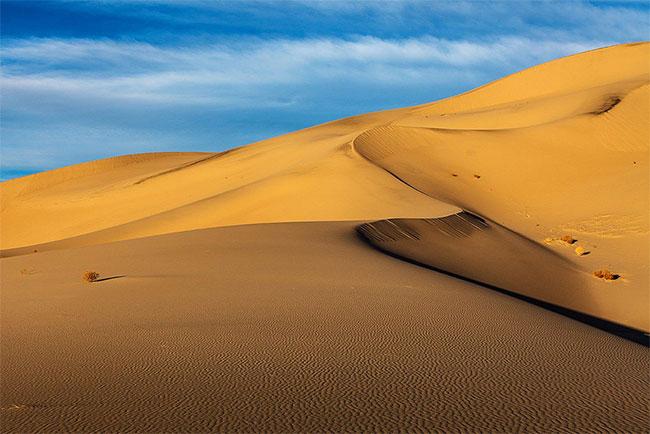 Tiếng hát trên cát