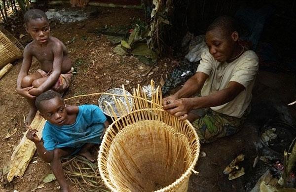Nếu muốn tiếp tục sống trong rừng, họ chỉ có thể nhận làm công việc săn bắn thuê....
