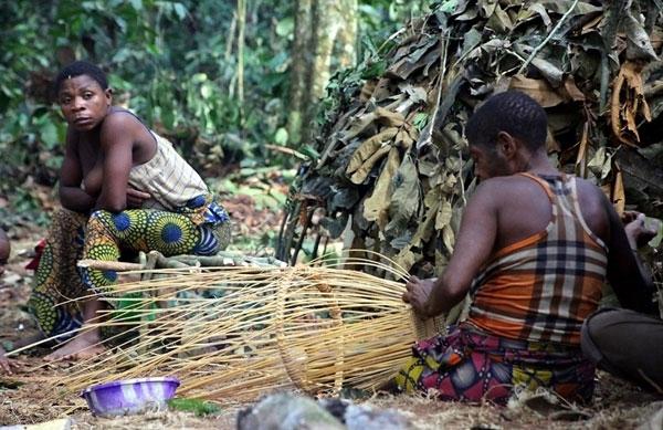 Phụ nữ thuộc bộ lạc Baka chỉ ở nhà đan lát và làm các công việc nội trợ.