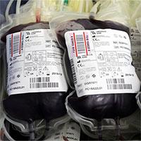Biến mọi nhóm máu thành O nhờ… vi khuẩn