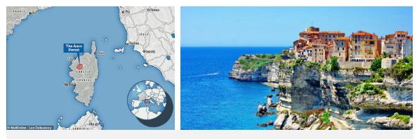 Đảo Corse - nơi phát hiện giống mèo lạ