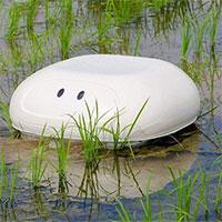 """""""Vịt"""" robot giúp nông dân Nhật diệt cỏ không cần hóa chất"""