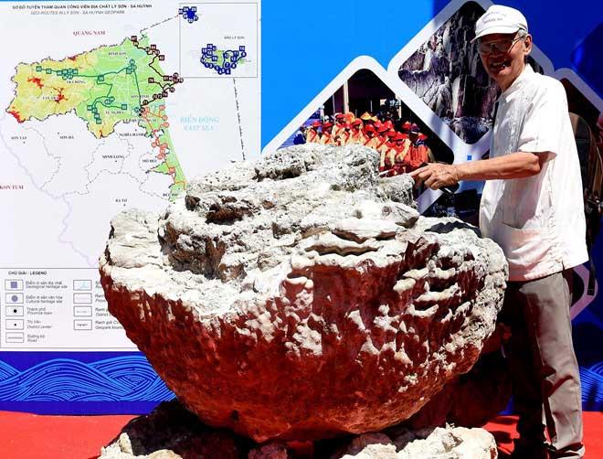 Khối san hô hóa thạch hình hoa hồng tại triển lãm.