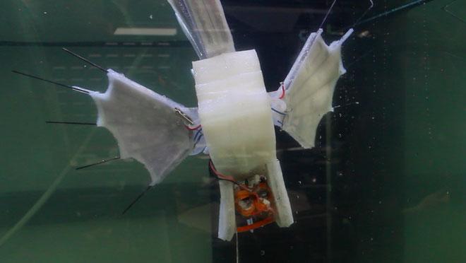 Robot này cũng có bộ truyền thủy lực và phương pháp lưu trữ năng lượng thay thế