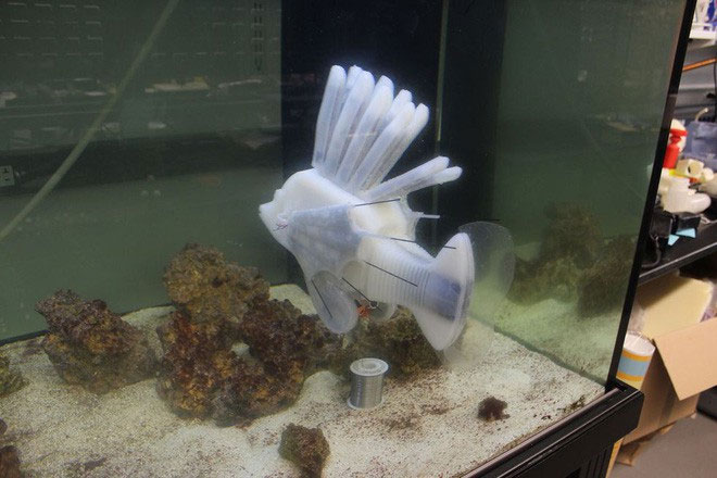 """Cá robot hoạt động nhờ hệ thống tuần hoàn chạy bằng """"máu""""."""
