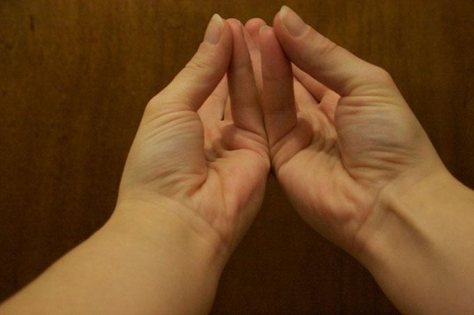 . Cơ gân tay từng giúp cho tổ tiên con người trèo cây.