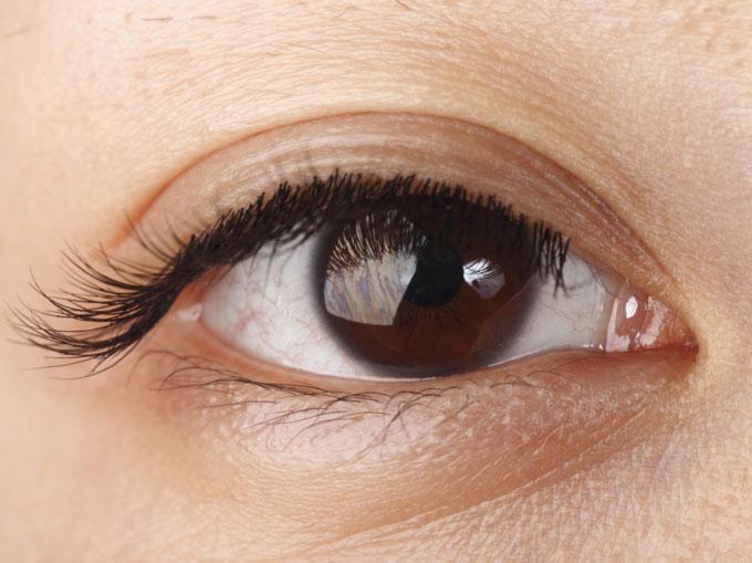 Đây là một nếp gấp của mô được tìm thấy ở rìa bên trong mắt.