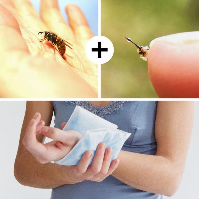 Cách sơ cứu khi bị ong đốt