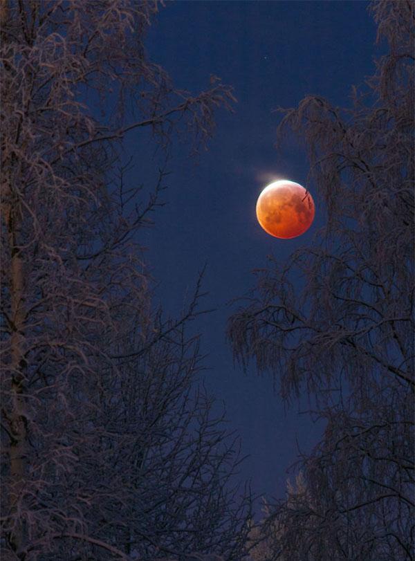 Siêu trăng sói