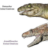 Cá sấu cổ đại là động vật ăn chay