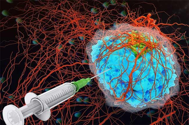 Sử dụng lumican làm chất kết dính collagen thì có tới hơn 90% số chuột sống sót khi được tiêm cytokine