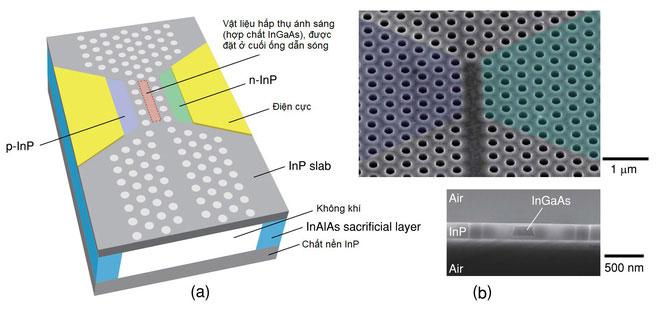Hình ảnh minh họa cho diode quang học và hình ảnh dưới kính hiển vi.