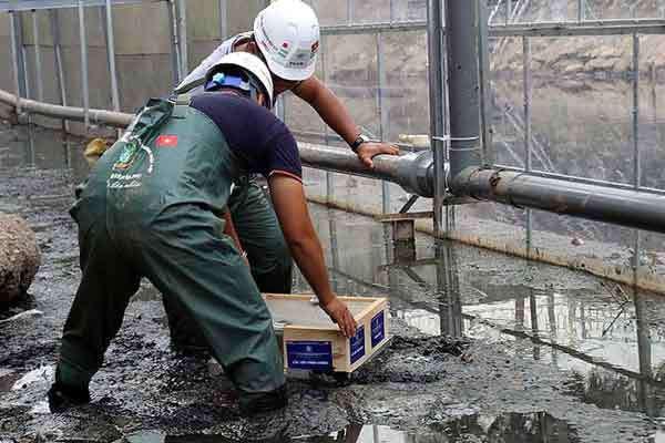 Khu vực trình diễn xử lý bùn trước khi áp dụng công nghệ nano.