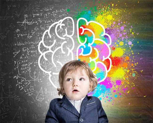 Sự sáng tạo không giống như trí thông minh.