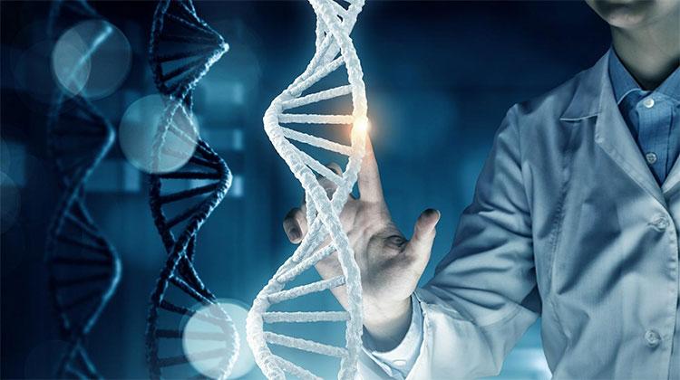 Các nhà nghiên cứu phát hiện 25 triệu biến dị sau khi giải trình tự gene ở người Kinh.