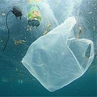 Phát hiện hạt vi nhựa trong nước mưa, không chỉ còn nằm dưới lòng biển nữa