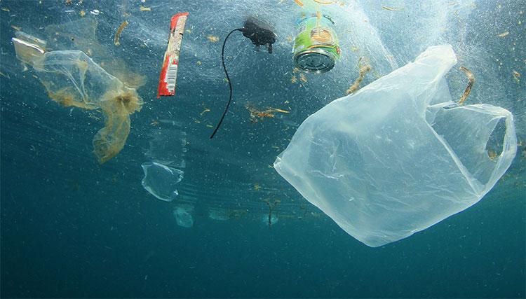Những trận mưa đã đem các hạt vi nhựa từ biển khơi.