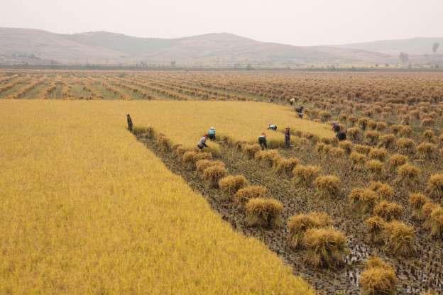 Vùng nông thônTriều Tiên nhìn từ tàu tới Bình Nhưỡng.