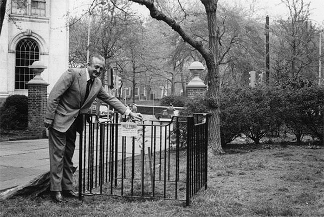 """Cây """"mặt trăng"""" được trồng ở Công viên Washington Square năm 1975"""
